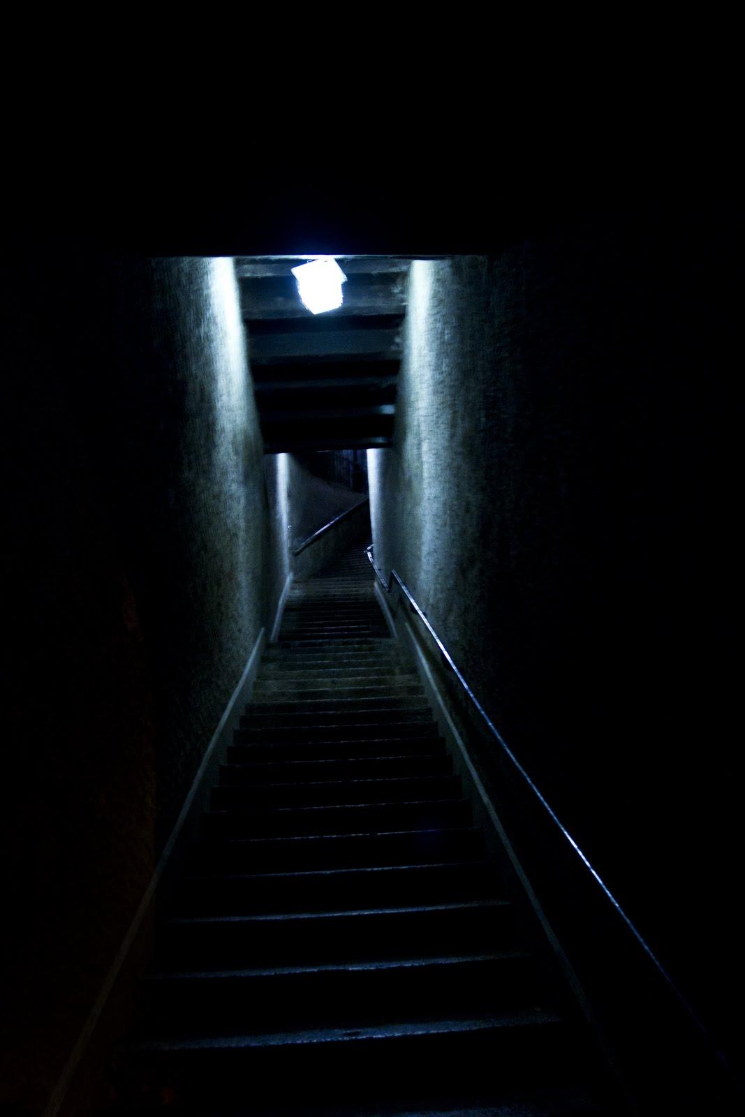 the cellar door photography september 2011
