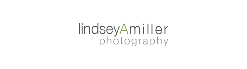 lindsey A miller photography