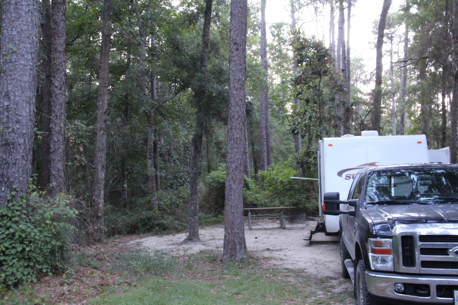 REVIEW Apalachicola National Forest Florida... Almost Free :)
