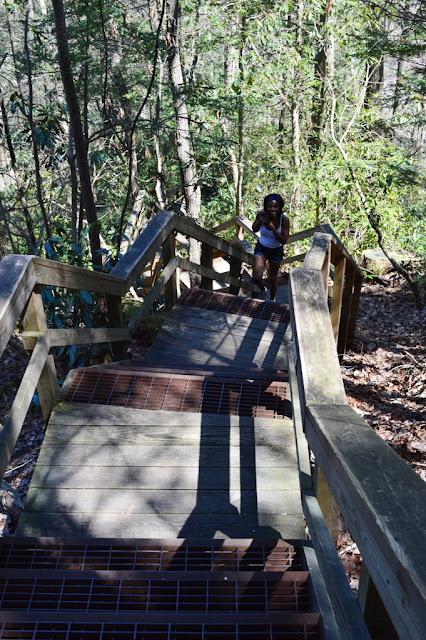 Steps - Tallulah Gorge - The City Dweller