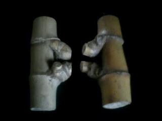 Misteri Tentang Mitos Bambu Petuk