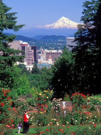 Living in portland conhecendo um pouco de portland for Portland international rose test garden