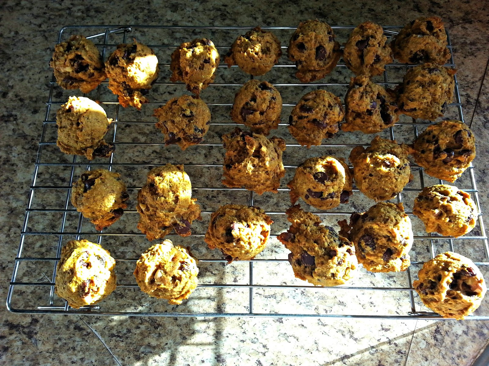 Pumpkin-Oatmeal Chocolate Chip Raisin Cookies - A Healthy Version