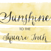 Sunshine to the Square Inch