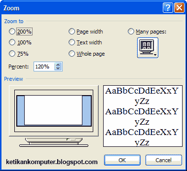 Zoom ms word 2007