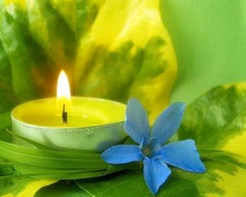 La luz para todos y para todo.