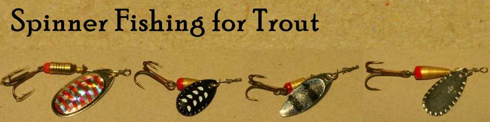 spinner fishing for trout: the differences between fly fishing for, Fly Fishing Bait