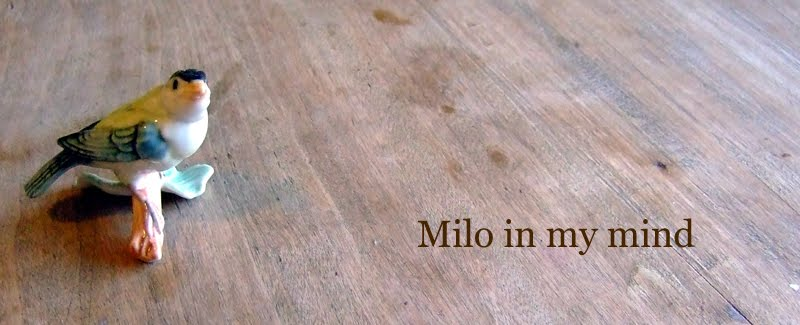 Milo in my mind