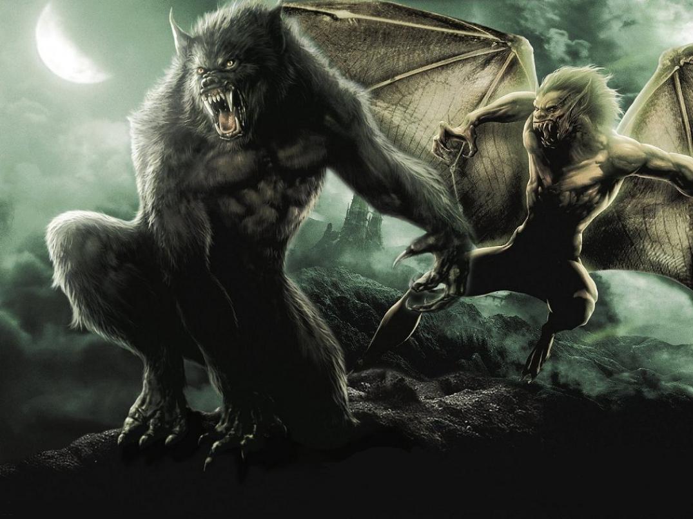 el lobo El lobo (canis lupus) es una especie de mamífero placentario del orden de los  carnívoros el perro doméstico (canis lupus familiaris) se considera miembro de .