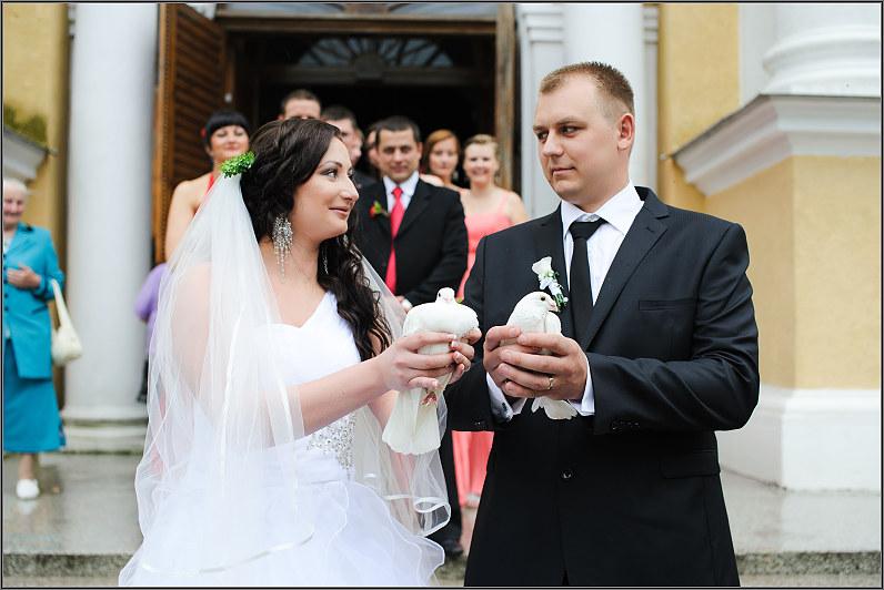 balti balandžiai per vestuves