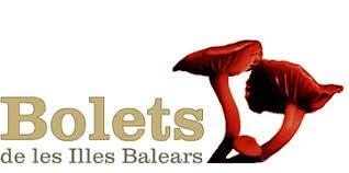 WEB DELS BOLETS DE LES ILLES BALEARS