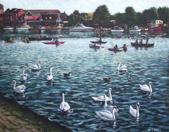swans and boats at southampton riverside park