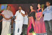 Rudramadevi warangal audio launch-thumbnail-10