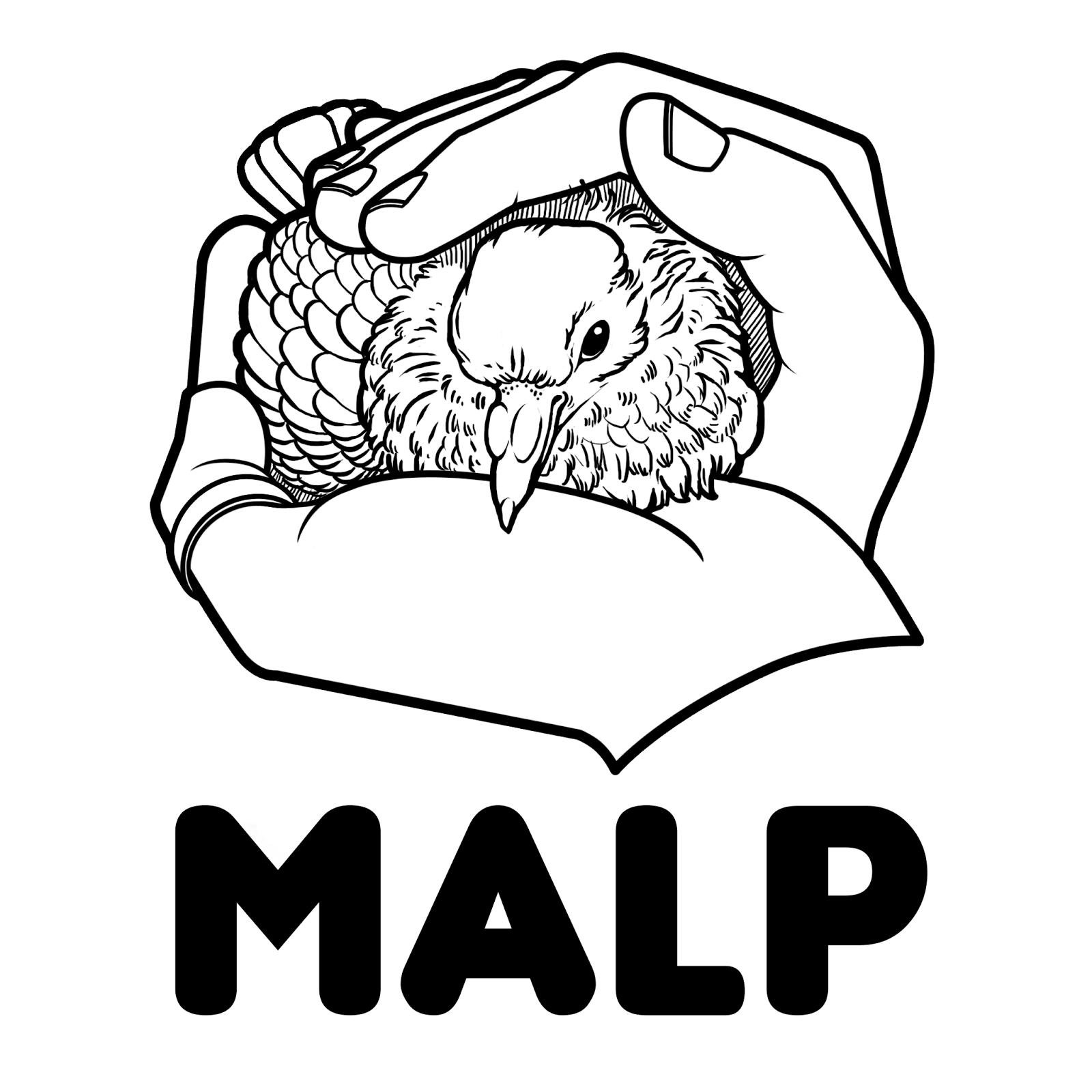 Web @malp_global