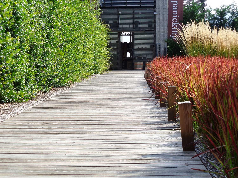 Il giardino sfumato impariamo a progettare un giardino for Progettare un giardino