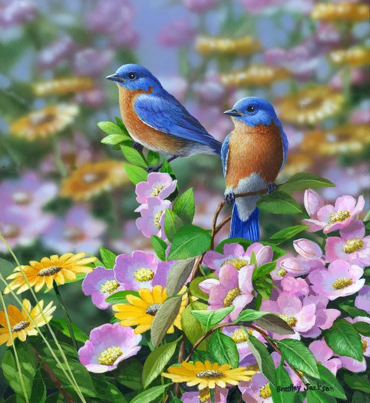 Maher art gallery bradley jackson for Les petits oiseaux