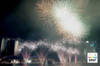 SG50 NDP Fireworks Marina Bay