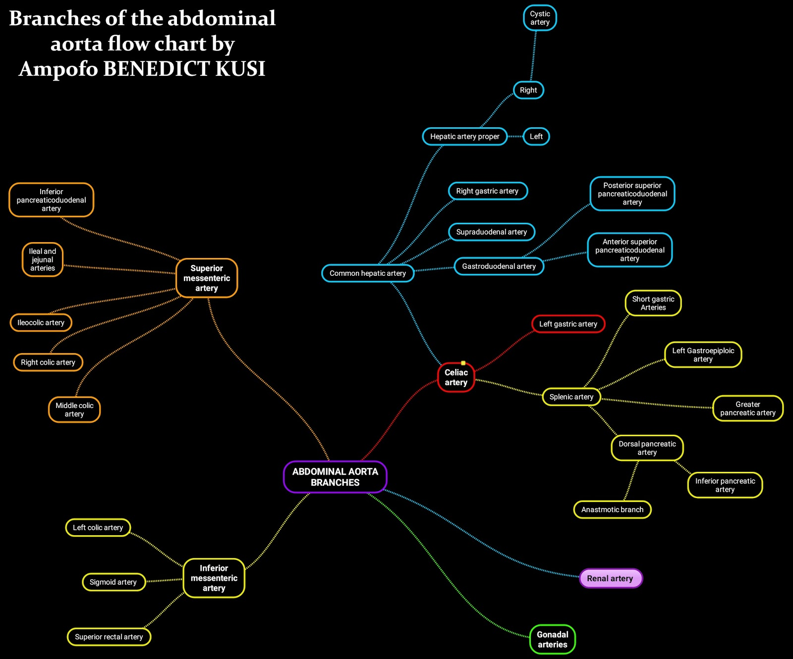 Medicowesome: Submissions: Branches of the abdominal aorta flow chart