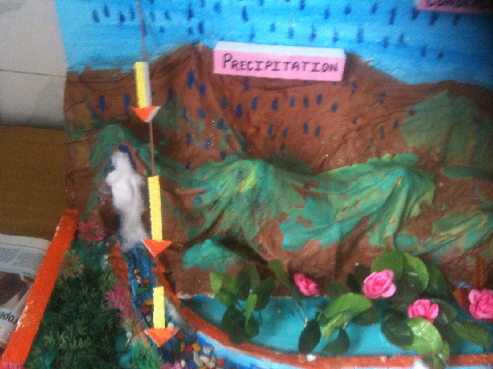 Bbps (Bal Bharati Public School), Rohini: Water Cycle by ...