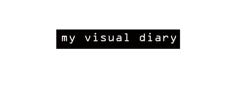 my visual diary