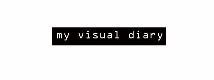 my visual diary