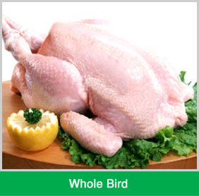 Warna Ayam Segar