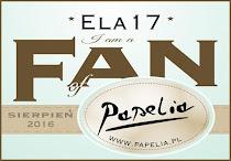 Fan-1.9