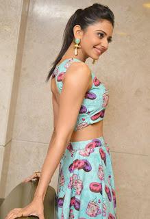 Actress Rakul Preet Singh  Pictures at Pandaga Chesko Success Meet  252815.JPG