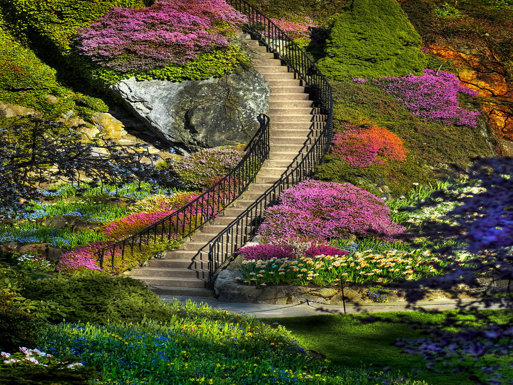 My amazing things blog beautiful flower garden photos for Beautiful landscape design
