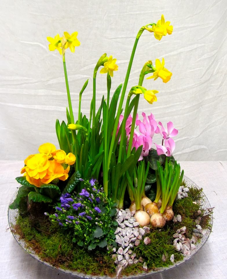 The Flower Shops Blog Spring is springing