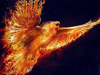 Wallpaper Keren Burung Api