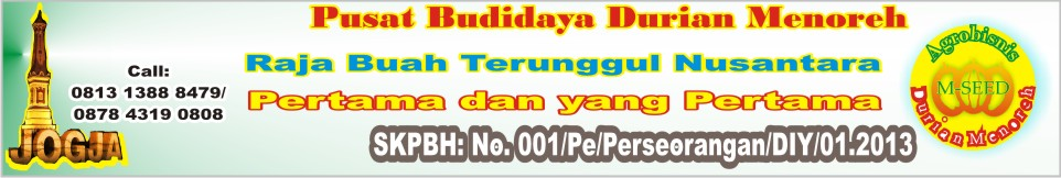 Pusat Budidaya Ber-SNI Durian Menoreh Varietas Terunggul Nasional