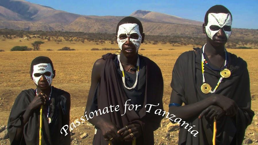TAfrica Safaris | Tanzania & Zanzibar Safari Expert: