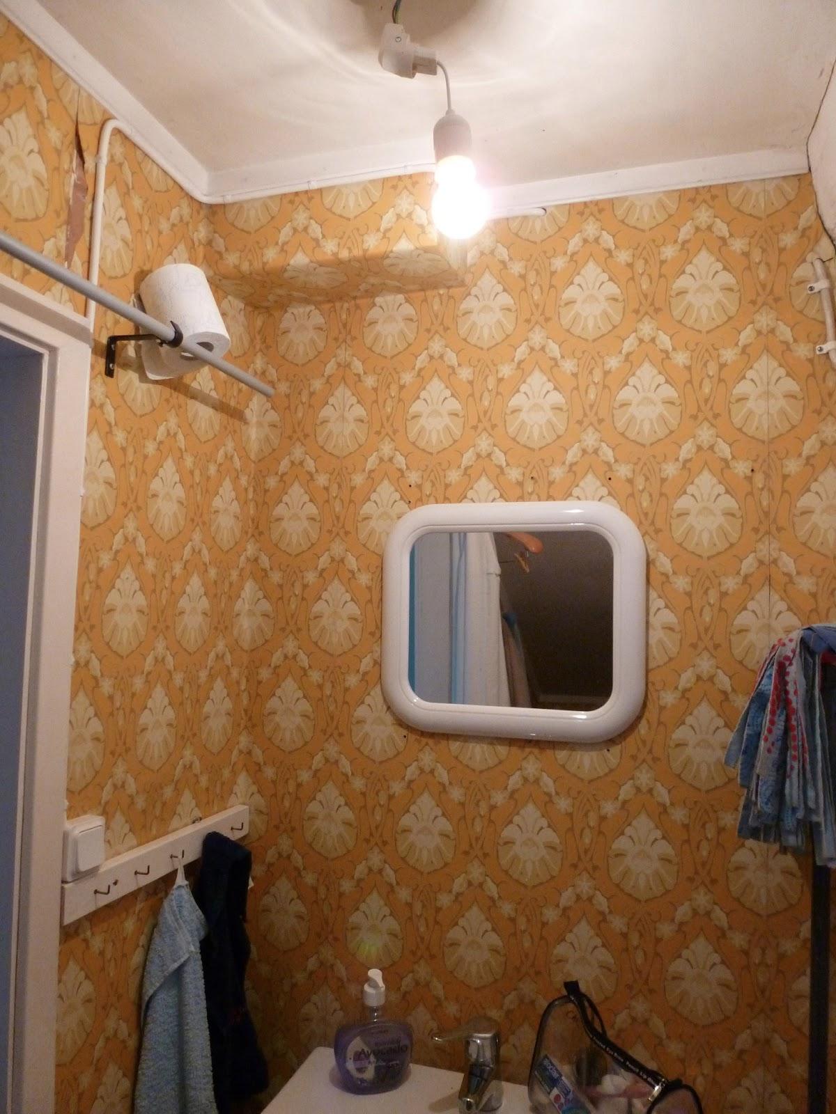 Livets apokalyps: uppdatering badrummet!