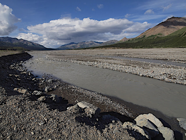 Braided River Bed, Denali National Park, Alaska, #braidedriver #denali #alaska