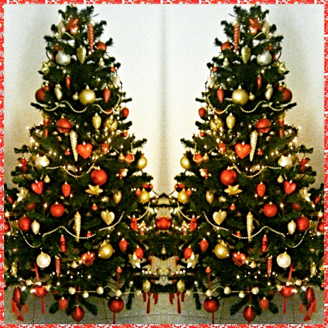 Instagram @lelazivanovic. Beautiful Christmas tree.