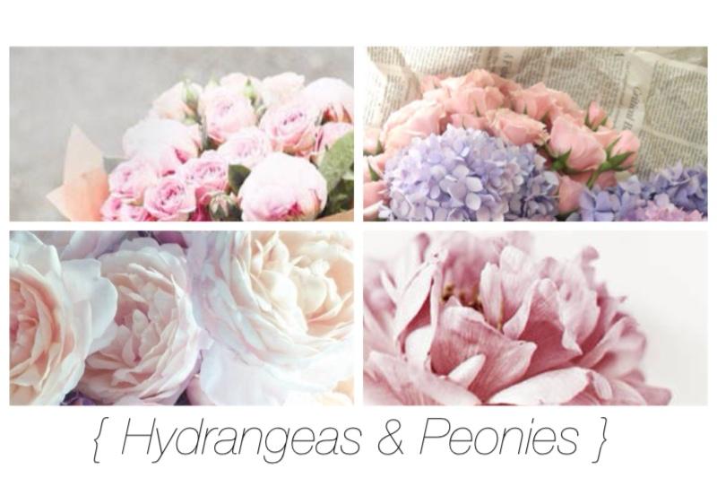 { Hydrangeas & Peonies }