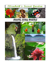 Click Picture to Buy My Costa Rica Book!