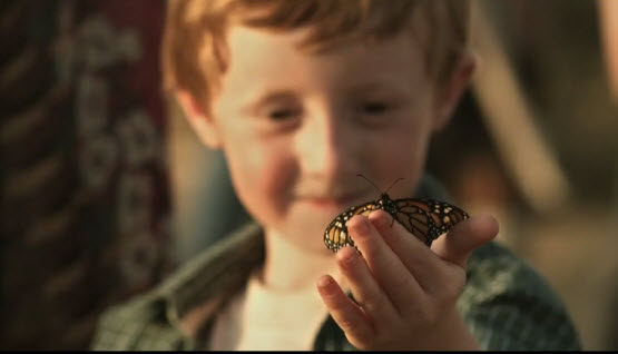 review the butterfly circus Well i thing the butterfly circus was a nice clip i think it has meaning to it i think the ending was meant to be a touching part, and it was.