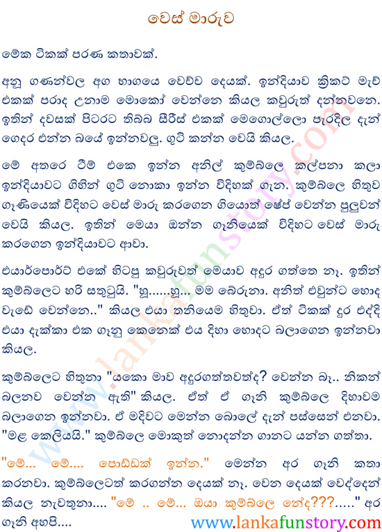 Sinhala Fun Story-Camouflage-Part One