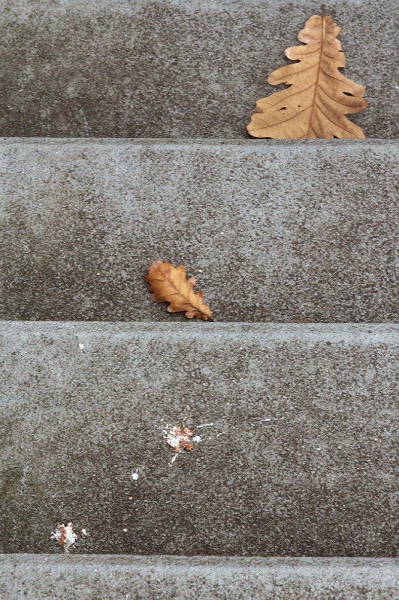 little things on the steps