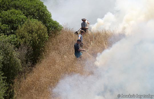 Family fights fire - grass fire in Lane Rd, Havelock North photograph