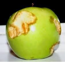 Apel yang terkelupas sehingga berubah menjadi kecokelatan