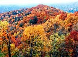 Great Smoky Mountains, Gatlinburg, TN