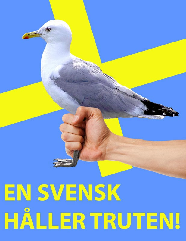 sverige matcher svensk r