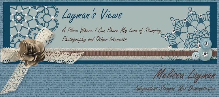 Layman's Views