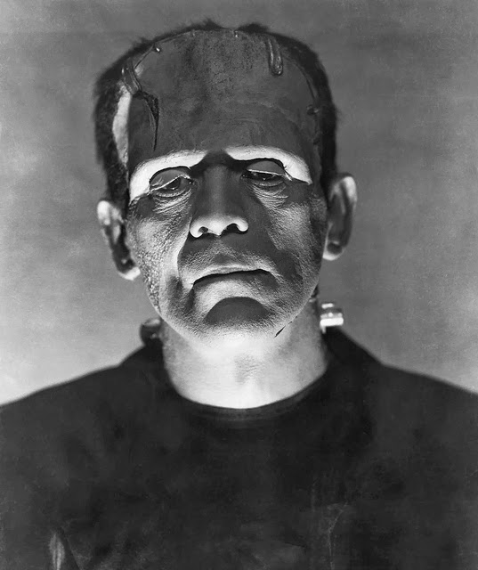 suicide in frankenstein 3 diane long hoeveler frankenstein, feminism, and literary theory cave ab homine unius libri, as the latin epigram warns us: beware the au thor of one book.