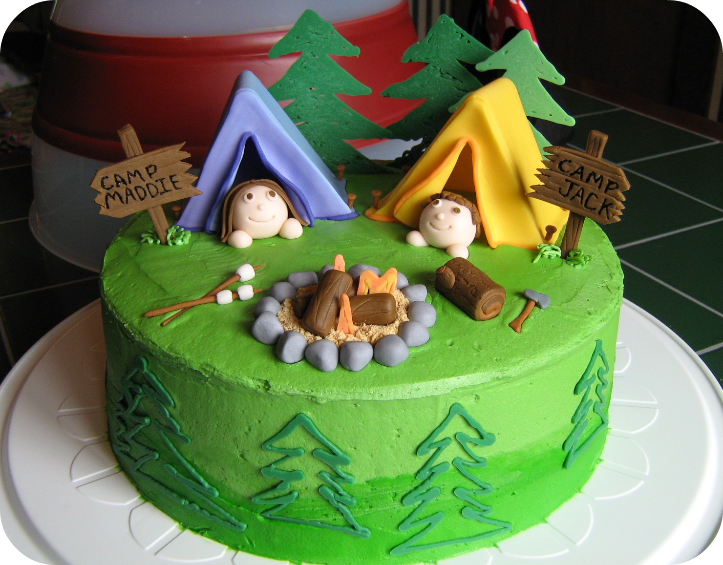 Cake Themed Birthday Party : Fowl Single File: A Cake for a Camping Party Theme