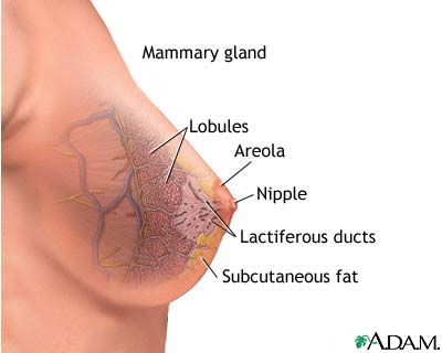 Thyroid medicine make you lose weight photo 2