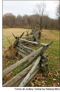 Fence at Jockey Hollow by Nataraj Metz